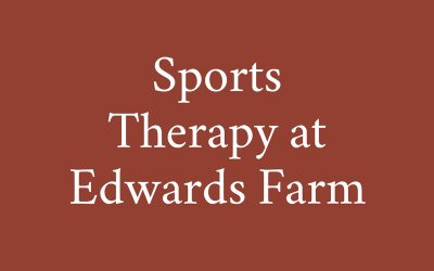 Sports Massage at Edwards Farm with Rachel Baker